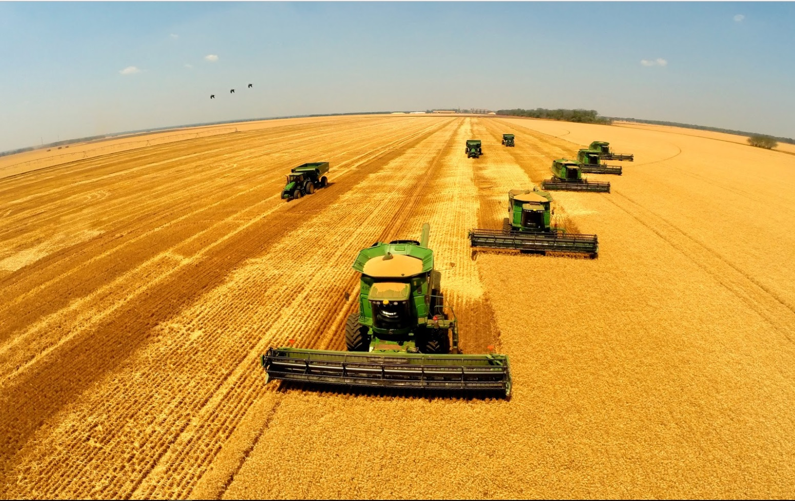 Farmers harvest crops from a field using machines